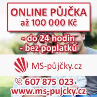 Rychlé finanční řešení do 100 000 Kč